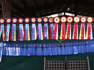 Atlanta Winter Classic Ribbons