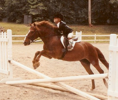 Many clients ship in for riding lessons at Patchwork Farm.