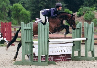 Hunter/jumper - Show with Patchwork Farm.